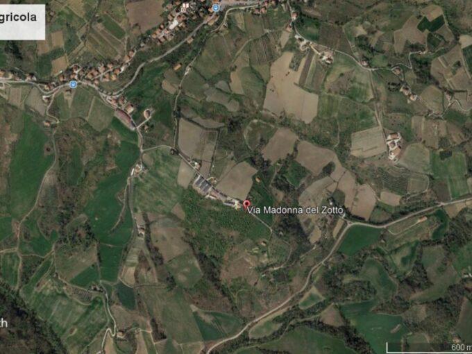 Azienda Agricola Roncofreddo Zotto